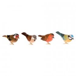 Clips - Oiseaux du Jardin, L. 11 cm (lot de 4)