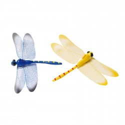 Magnets papillon-libellule