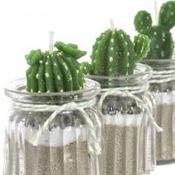 Bougie - Cactus, H. 10 cm